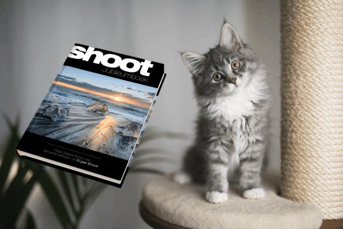 Shoot fotowedstrijd