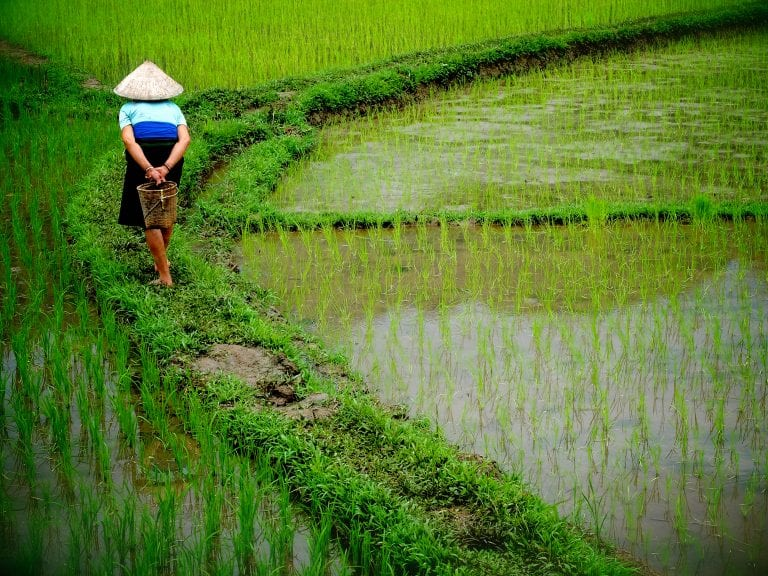 Fotoreis door Vietnam: Land van de trotse glimlach