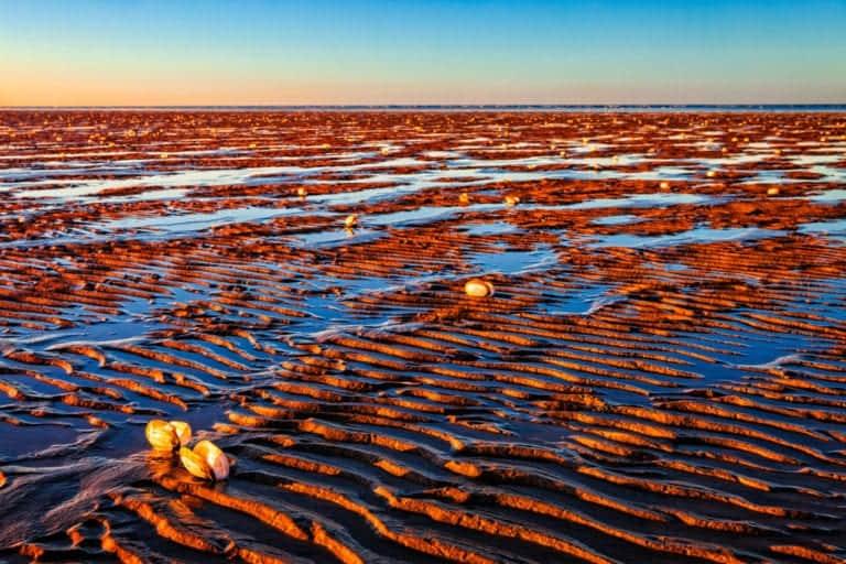Strandfotografie: Pareltjes aan de kust