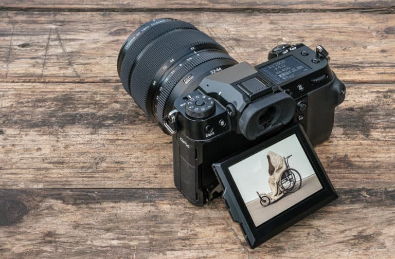 Fujifilm GFX100S review: Little big man