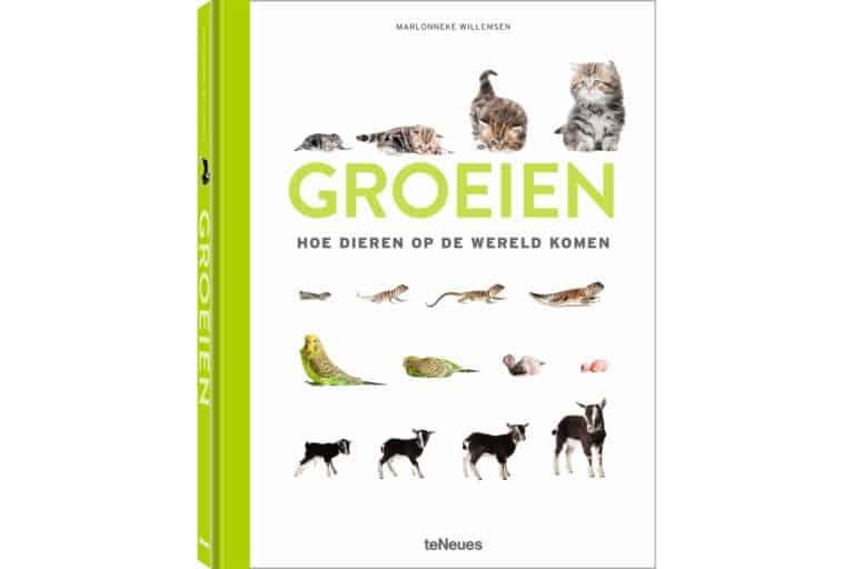 Schattig én leerzaam: Marlonneke Willemsen fotografeerde eerste levensweken van dieren voor fotoboek