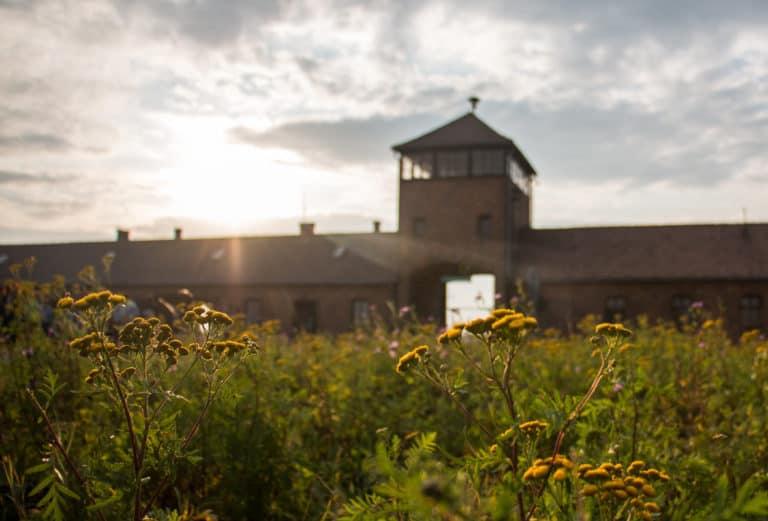 Oordeel: Auschwitz