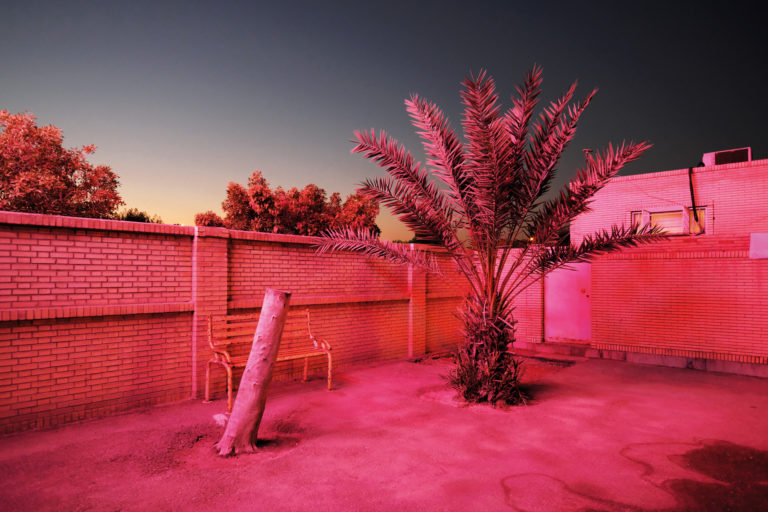 Expo: .tiff 2021 – Emerging Belgian Photography